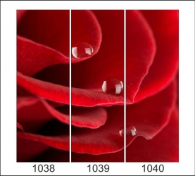 1038-1040