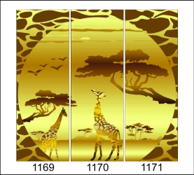 1169-1171